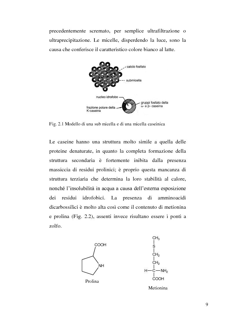 Anteprima della tesi: Sviluppo di un metodo RP-HPLC-IIR con reagente di interazione ionica per la determinazione di anioni di interesse bromatologico nel latte, Pagina 7