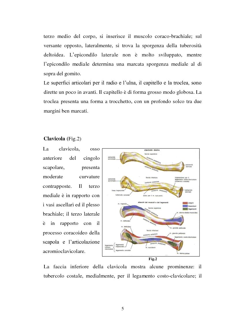 Anteprima della tesi: Trattamento fisico-strumentale e cinesiterapico della sindrome da impingement, Pagina 5