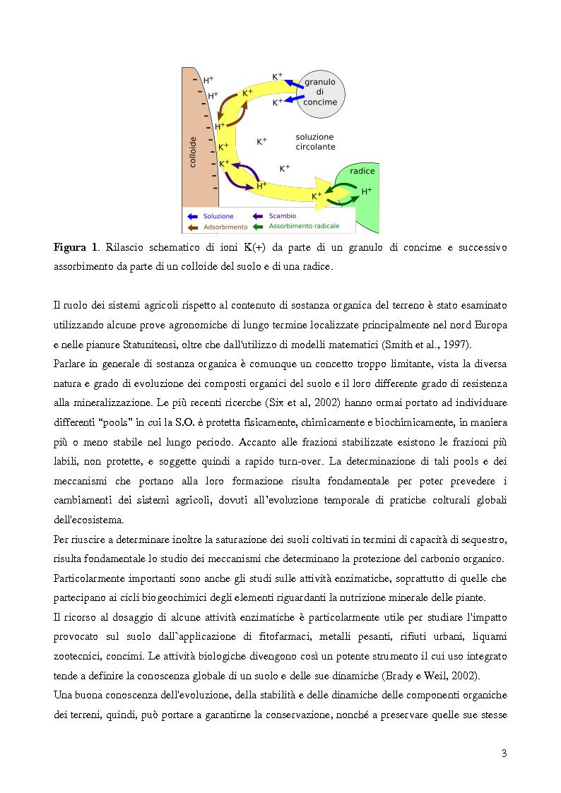 Anteprima della tesi: Analisi di genotossicità di suoli agricoli in colture biologiche e convenzionali di pomodoro, Pagina 3