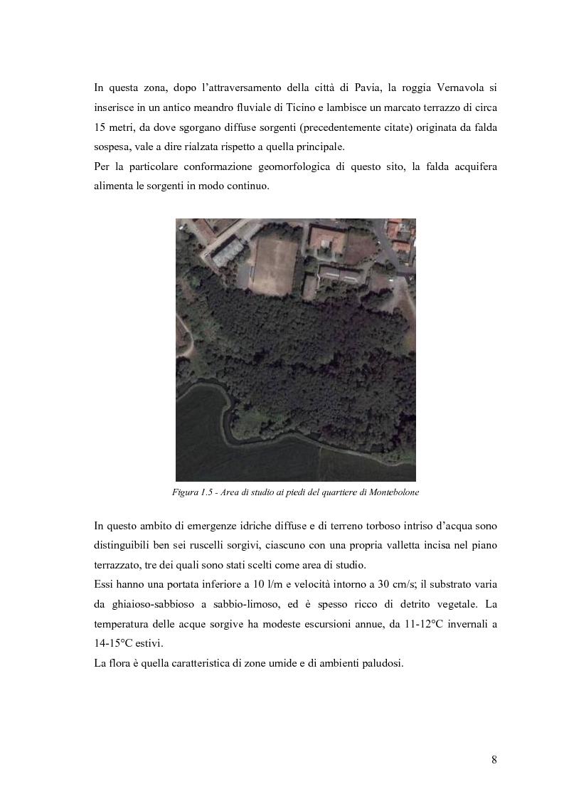 Anteprima della tesi: Dinamica di accrescimento di Leucojum aestivum L. in alcune sorgenti di terrazzo a Pavia, Pagina 8