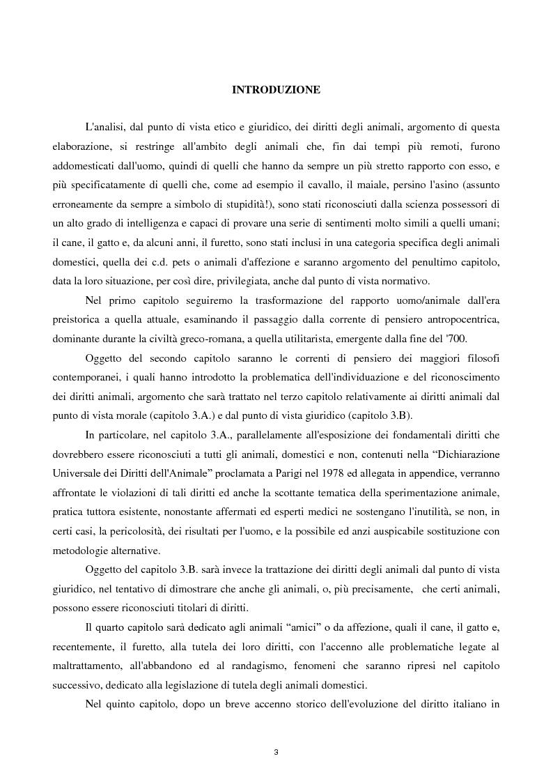 Anteprima della tesi: Etica e tutela dei diritti degli animali domestici, Pagina 1