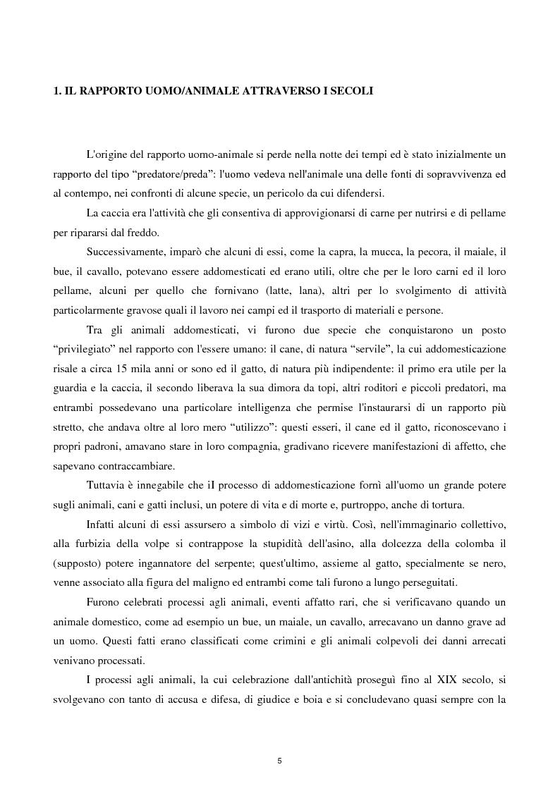 Anteprima della tesi: Etica e tutela dei diritti degli animali domestici, Pagina 3