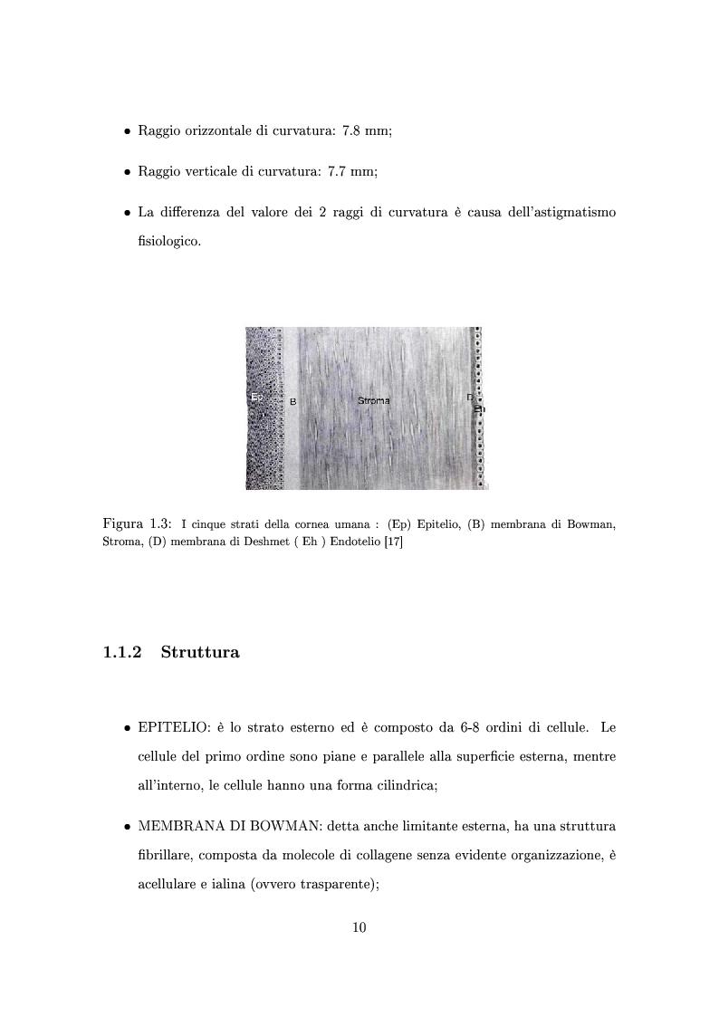 Anteprima della tesi: Un modello numerico per il comportamento meccanico della cornea affetta da cheratocono, Pagina 6