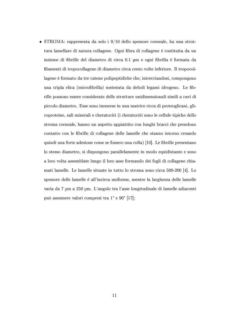 Anteprima della tesi: Un modello numerico per il comportamento meccanico della cornea affetta da cheratocono, Pagina 7