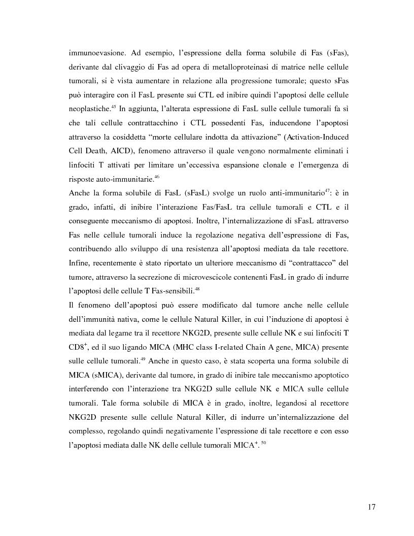 Estratto dalla tesi: L'immunosoppressione tumorale nel carcinoma renale