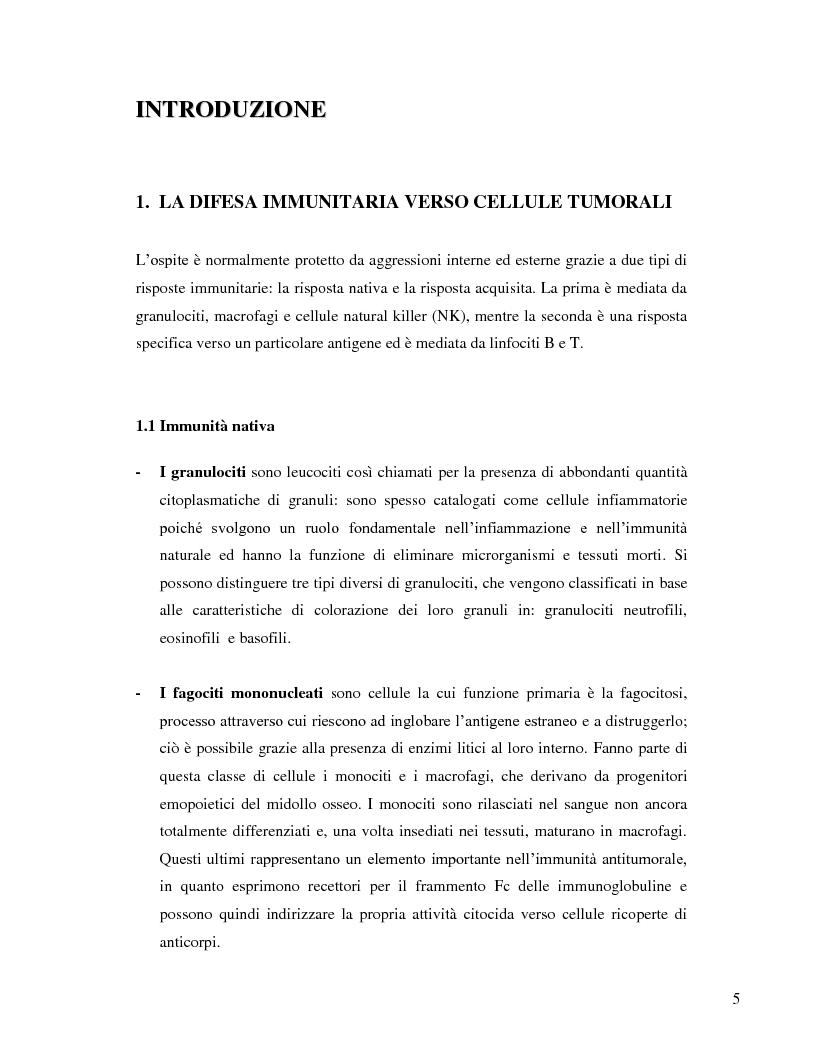 Anteprima della tesi: L'immunosoppressione tumorale nel carcinoma renale, Pagina 2