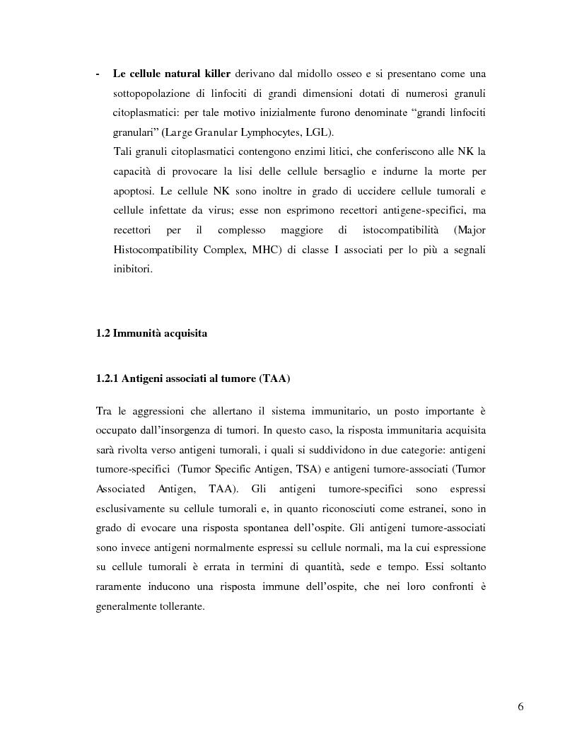 Anteprima della tesi: L'immunosoppressione tumorale nel carcinoma renale, Pagina 3