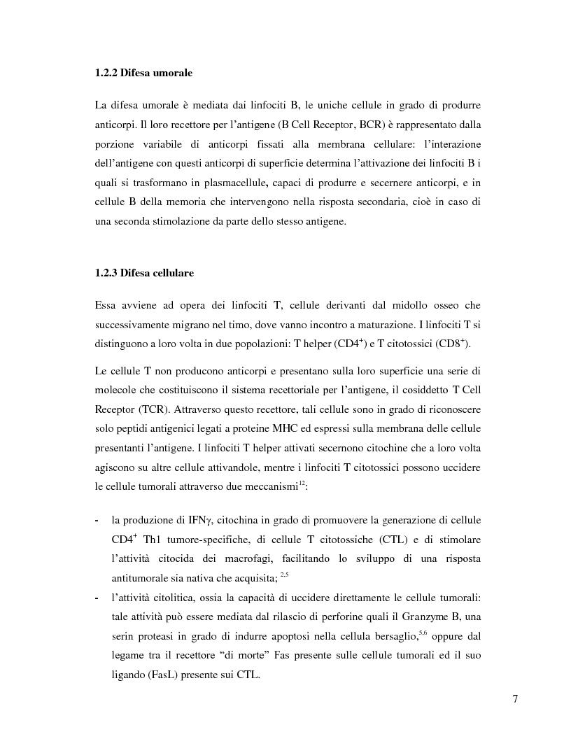Anteprima della tesi: L'immunosoppressione tumorale nel carcinoma renale, Pagina 4