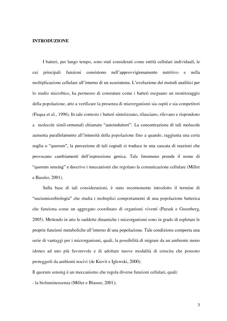 Anteprima della tesi: Comunicazione cellulare nei batteri lattici degli alimenti, Pagina 1