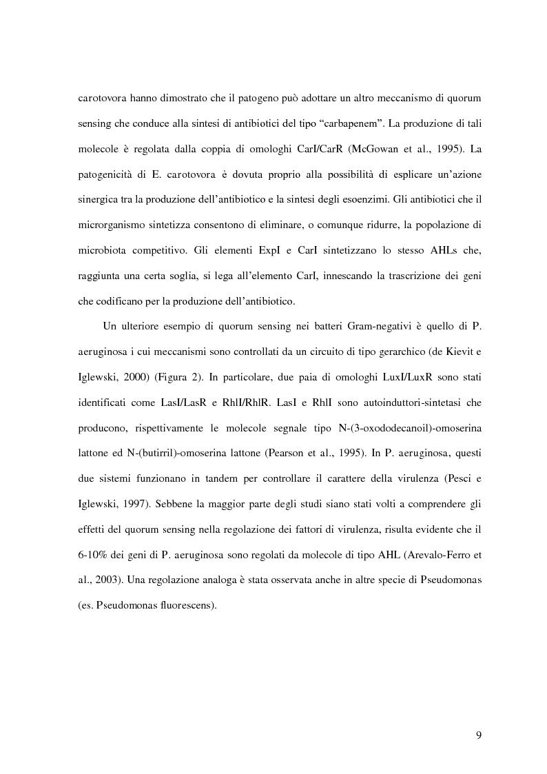 Anteprima della tesi: Comunicazione cellulare nei batteri lattici degli alimenti, Pagina 7