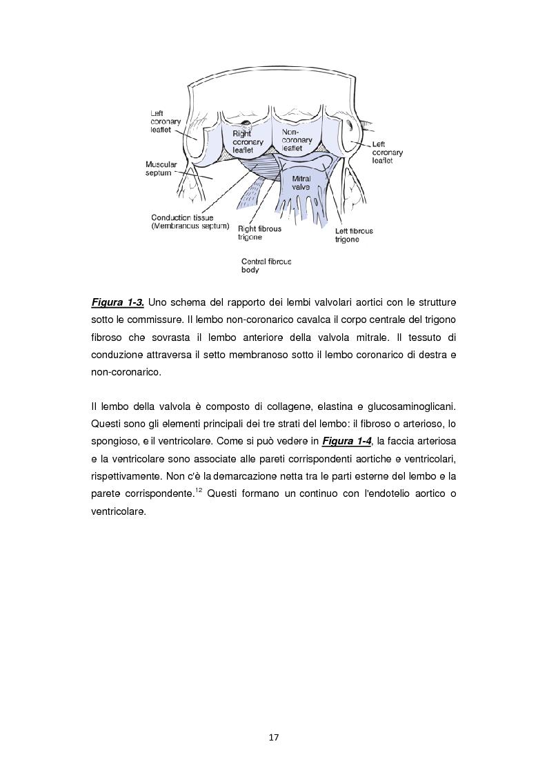Anteprima della tesi: Nuove frontiere nella chirurgia sostitutiva della valvola aortica, Pagina 9
