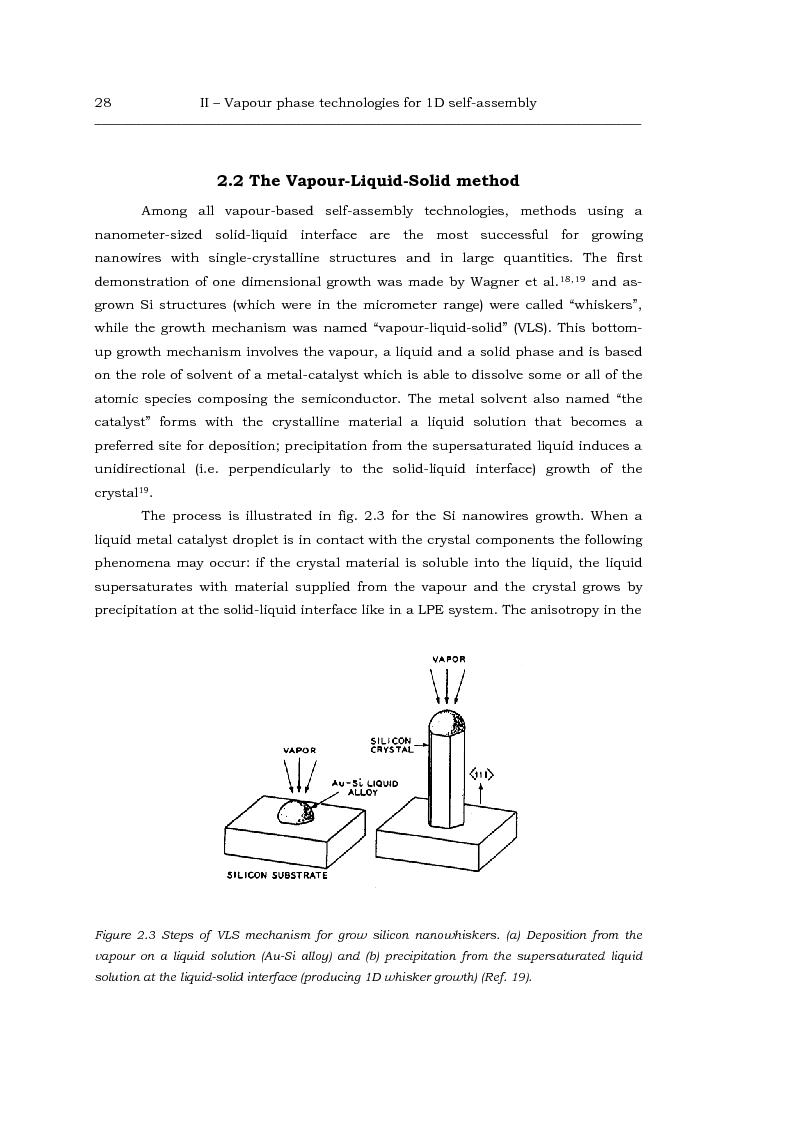 Anteprima della tesi: Au-catalized self-assembly of III-V semiconductor nanowires by metalorganic vapour phase epitaxy, Pagina 6
