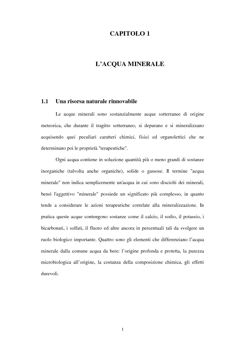 Anteprima della tesi: Il mercato italiano delle acque minerali, Pagina 1