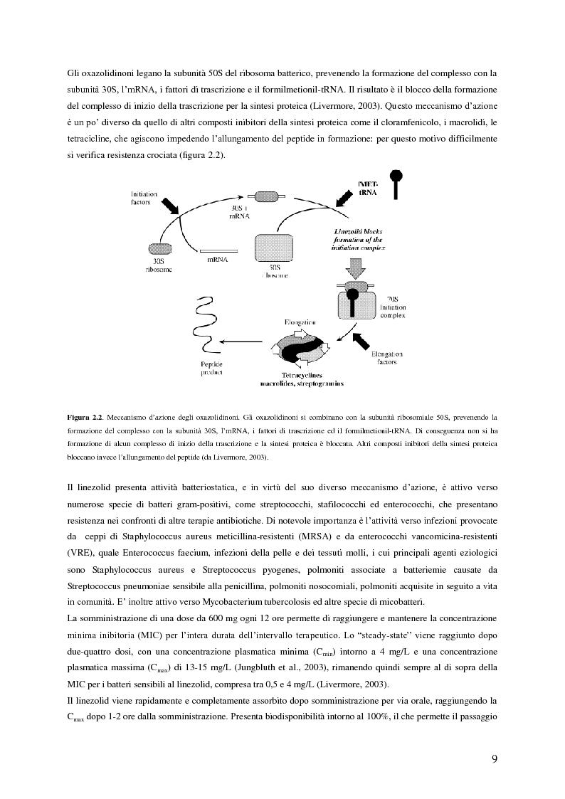 Anteprima della tesi: Sviluppo e applicazione di metodiche per il dosaggio plasmatico degli antibiotici linezolid e vancomicina mediante HPLC, Pagina 6