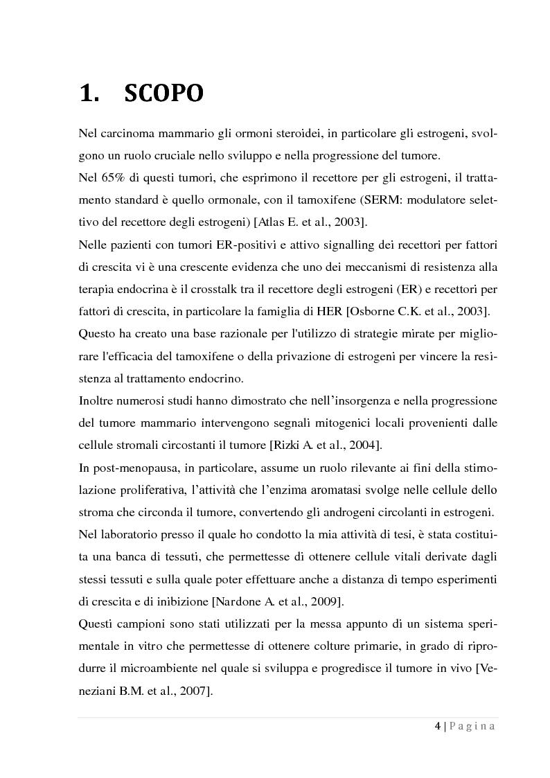 inibitori dell'aromatasi non steroidei