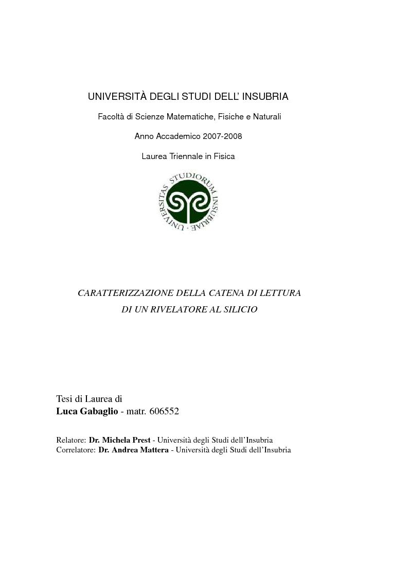 Anteprima tesi laurea triennale caratterizzazione for Costo di raccordo della cabina di log