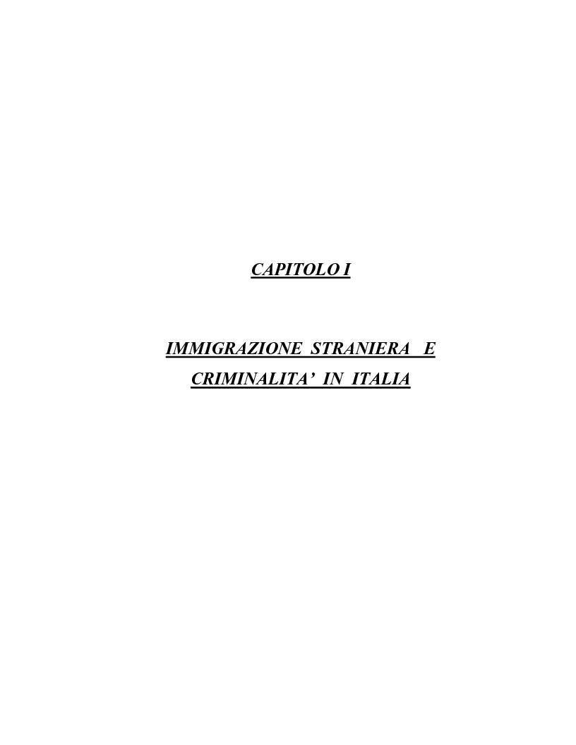 Anteprima della tesi: La criminalità dei minori stranieri e l'intervento sociale, Pagina 13