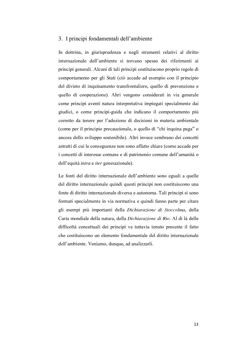 Anteprima della tesi: Ecosystem approach: una nuova strategia per la salvaguardia della biodiversità, Pagina 10