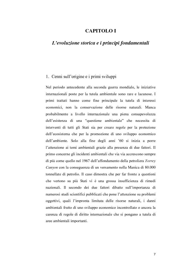 Anteprima della tesi: Ecosystem approach: una nuova strategia per la salvaguardia della biodiversità, Pagina 4
