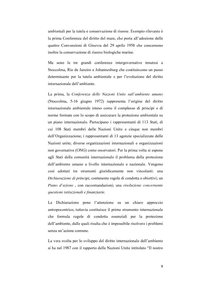 Anteprima della tesi: Ecosystem approach: una nuova strategia per la salvaguardia della biodiversità, Pagina 6