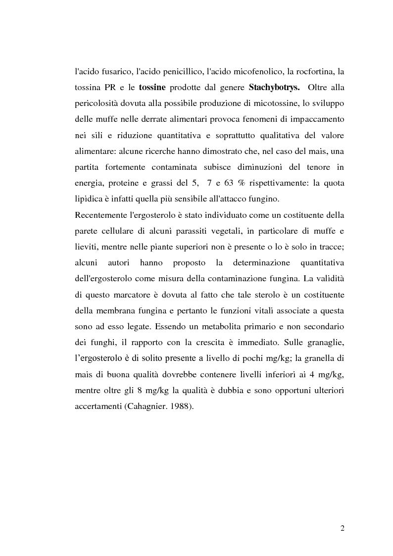 Anteprima della tesi: Fusariotossine: Tossicità alimentare ed ambientale, Pagina 3