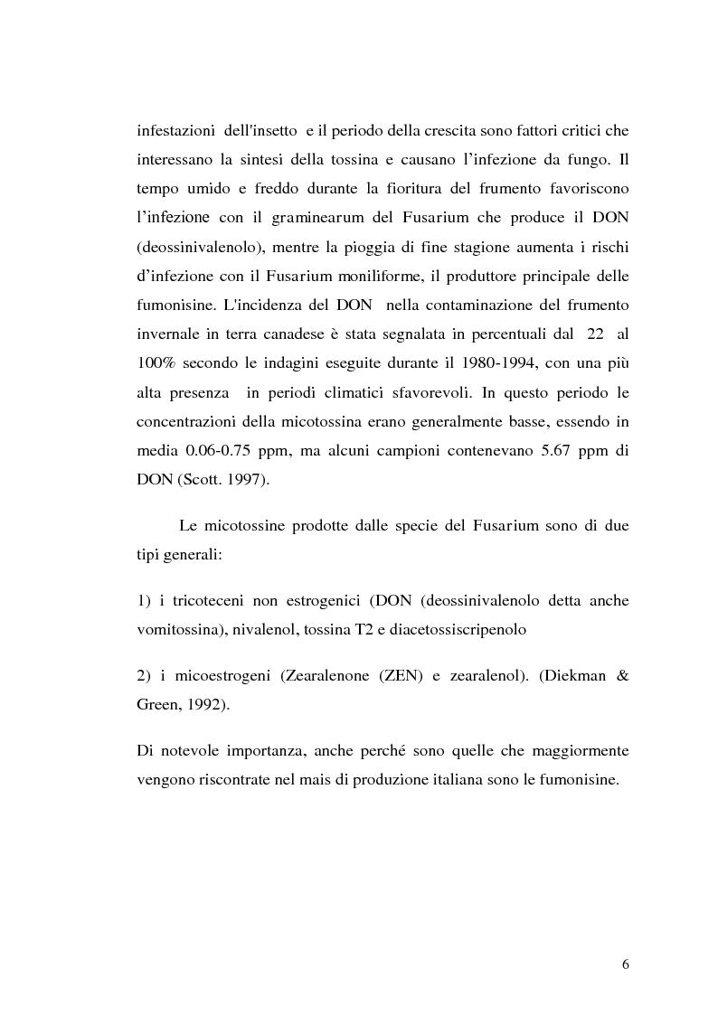 Anteprima della tesi: Fusariotossine: Tossicità alimentare ed ambientale, Pagina 7
