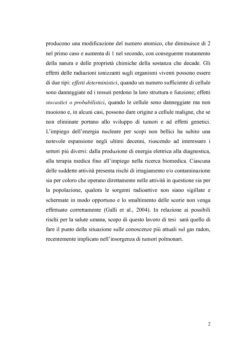 Anteprima della tesi: Tossicità del Radon, Pagina 3