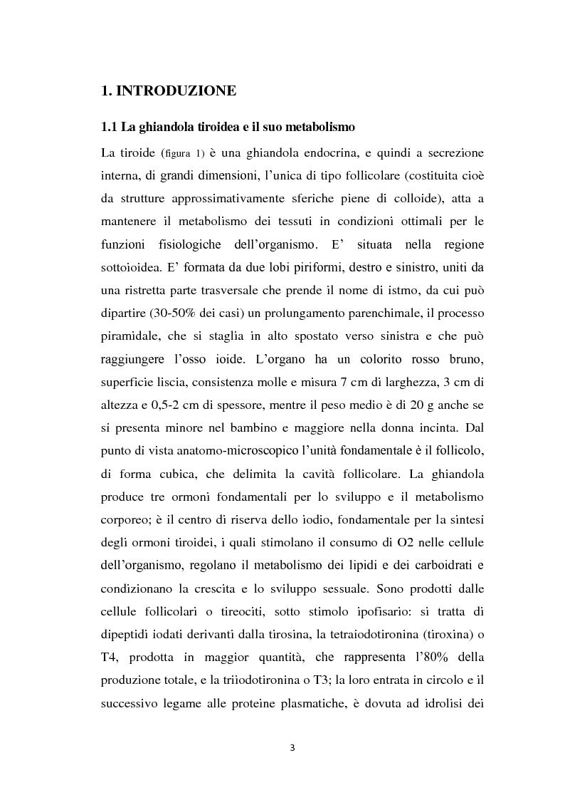 Anteprima della tesi: Screening delle patologie tiroidee nel territorio Sannita-Irpino e monitoraggio del loro decorso, Pagina 2