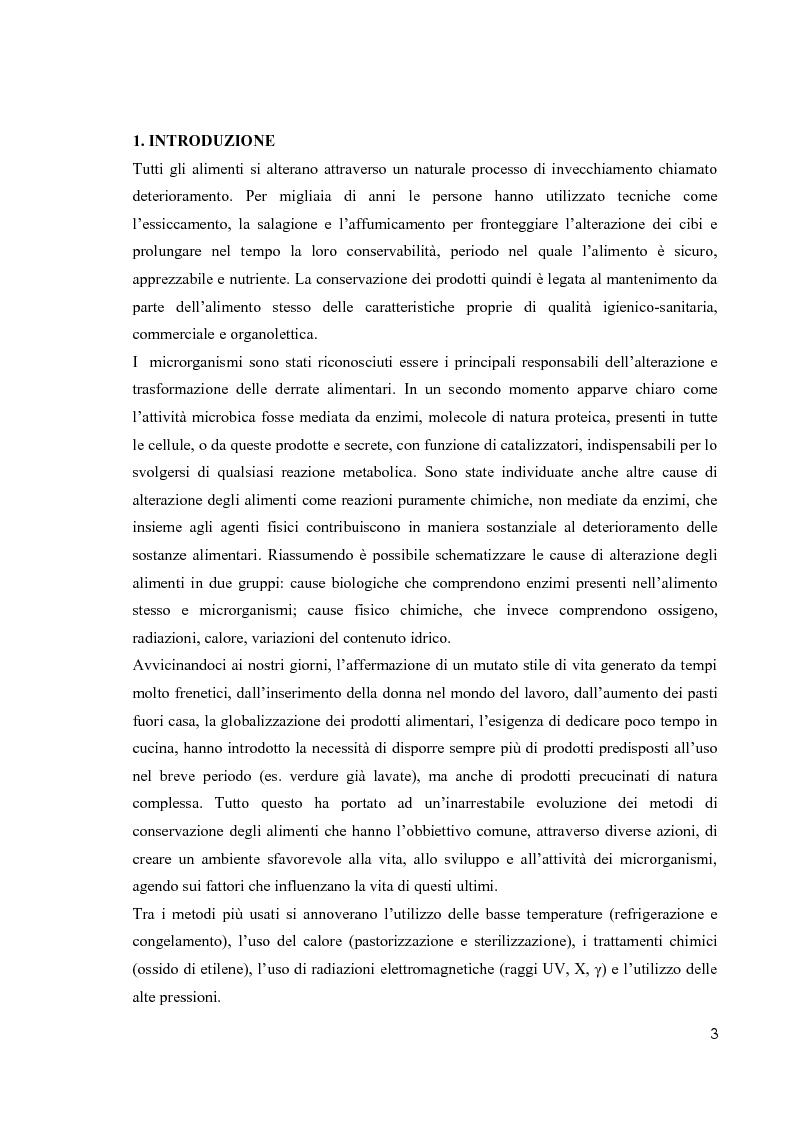 Anteprima della tesi: Primi studi nell'applicazione della tecnologia al plasma nella sterilizzazione di alimenti contaminati da funghi e batteri, Pagina 2