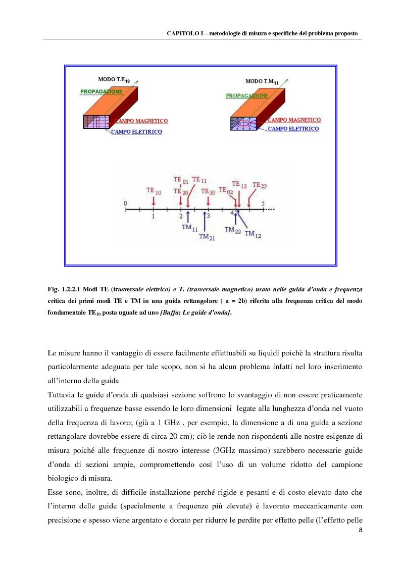 Anteprima della tesi: Spettroscopia dielettrica per la caratterizzazione morfologica di eritrociti umani, Pagina 10