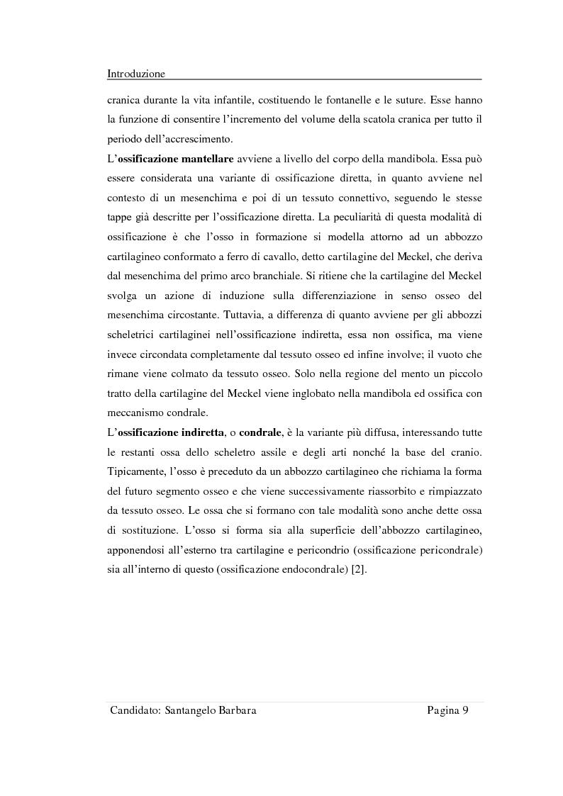Anteprima della tesi: Studio della stabilità primaria di perni dentali innovativi inseriti con tecnologia Piezosurgery, Pagina 7