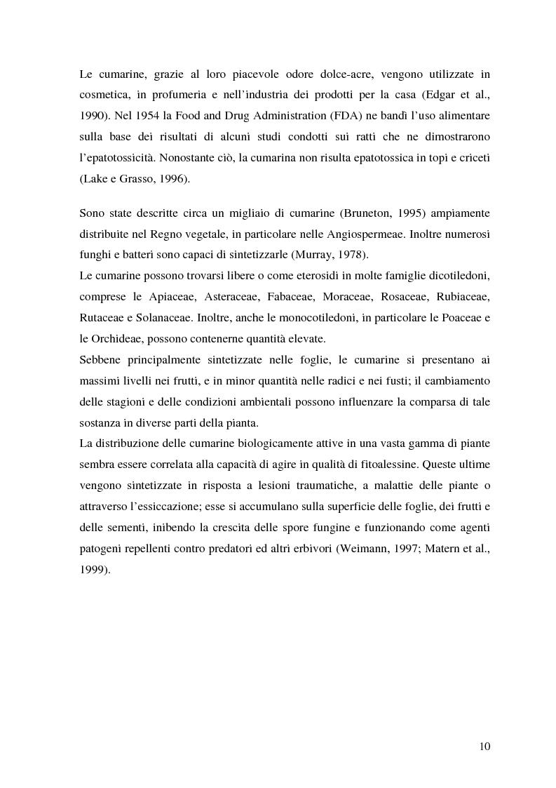Anteprima della tesi: Attività antifungina di derivati cumarinici estratti da Magydaris pastinacea nei confronti di Candida albicans, Pagina 5