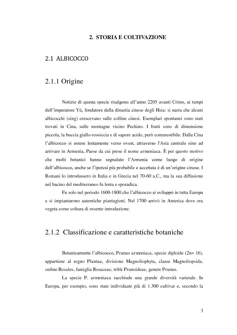 Anteprima della tesi: Comportamento vegeto-produttivo di diverse varietà di albicocco e nashi in Andalusia, Pagina 4