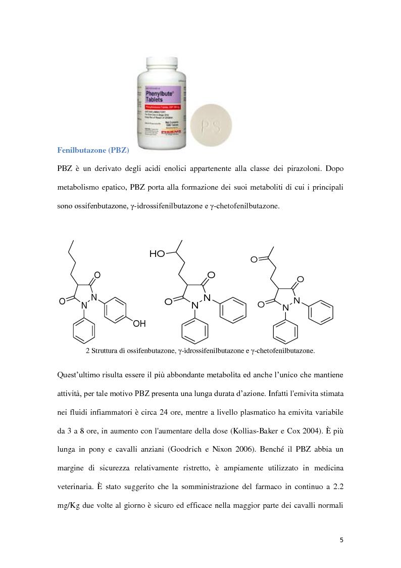 Anteprima della tesi: Determinazione quantitativa di fenilbutazone e flunixin meglumina in plasma equino tramite un sensore elettrochimico accoppiato a estrazione in fase solida con polimeri a stampo molecolare, Pagina 6