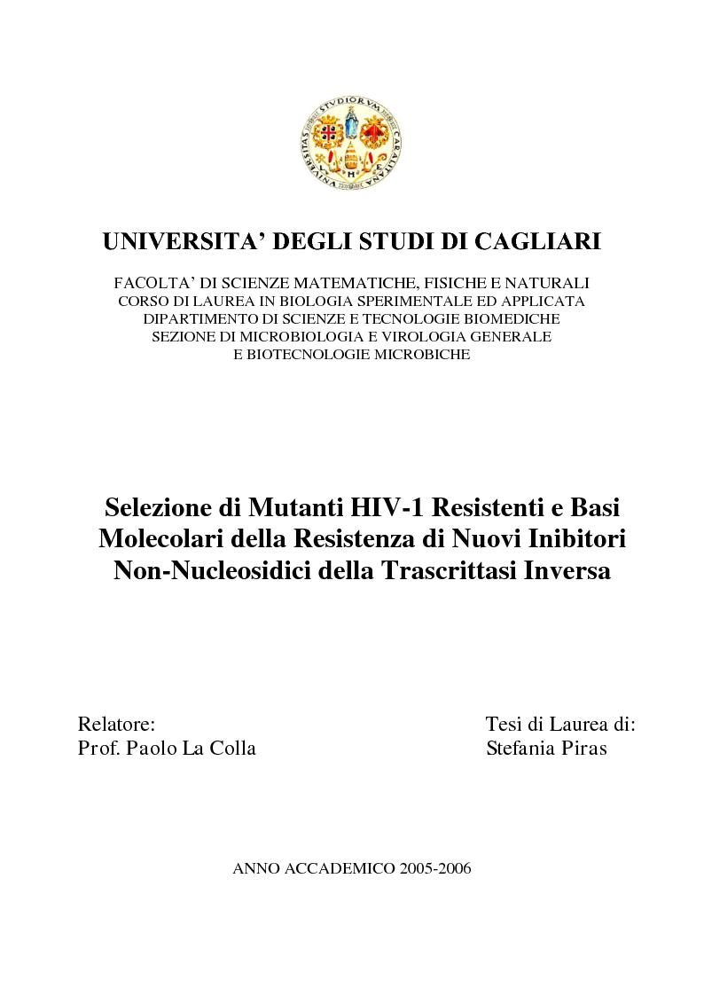 Anteprima della tesi: Selezione di Mutanti HIV-1 Resistenti e Basi Molecolari della Resistenza di Nuovi Inibitori Non-Nucleosidici della Trascrittasi Inversa, Pagina 1