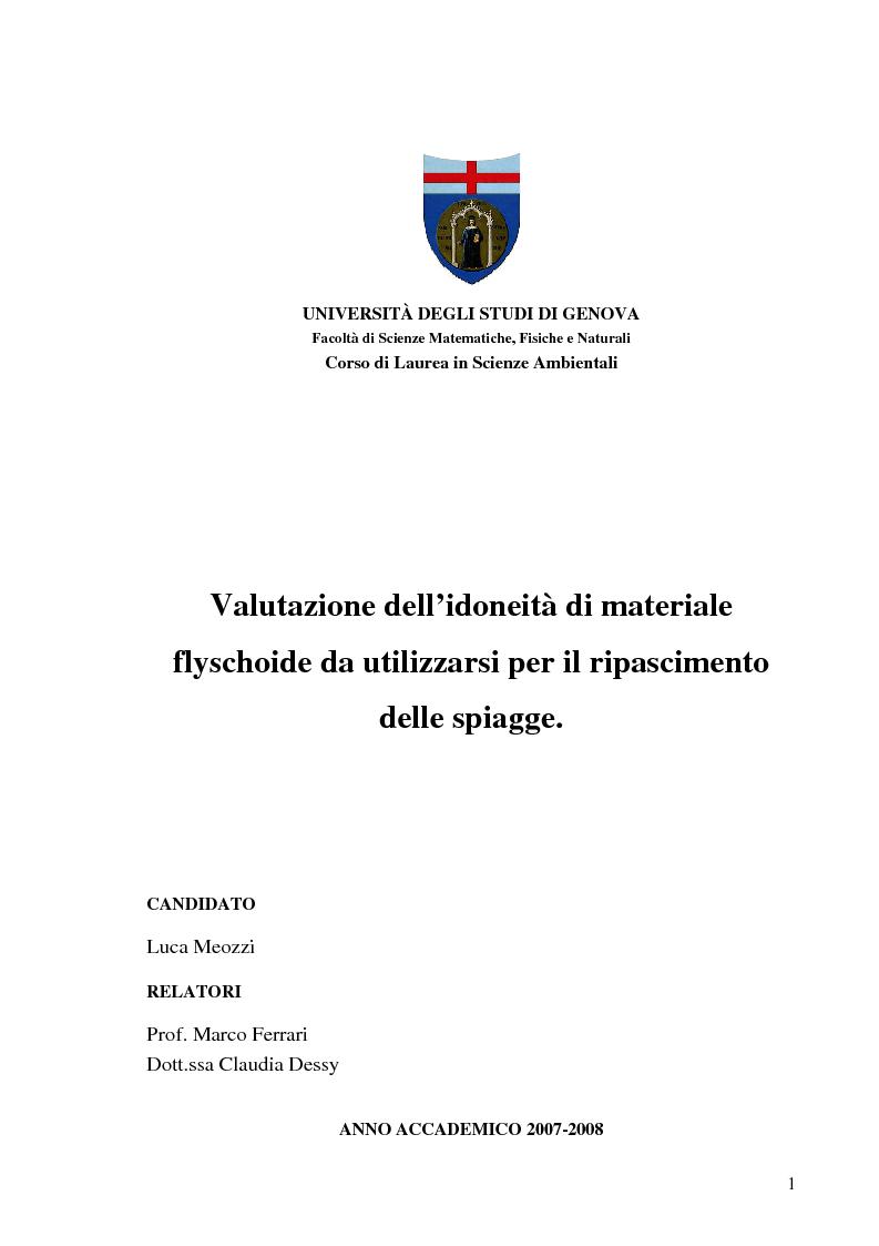 Anteprima della tesi: Valutazione dell'idoneità di materiale flyschoide da utilizzarsi per il ripascimento delle spiagge., Pagina 1