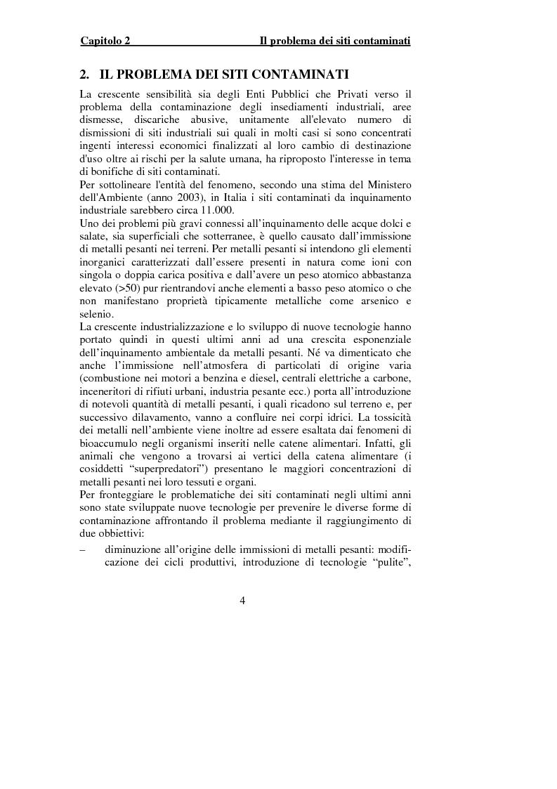 Anteprima della tesi: Indagine sperimentale per il trattamento delle acque di falda contaminate dalle presenza di piombo, Pagina 2