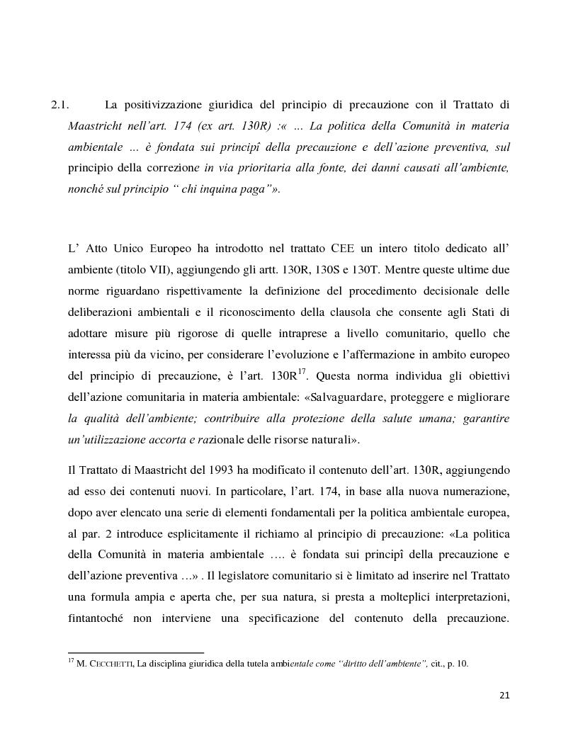 Anteprima della tesi: La decisione precauzionale tra normazione, amministrazione e giurisdizione, Pagina 10