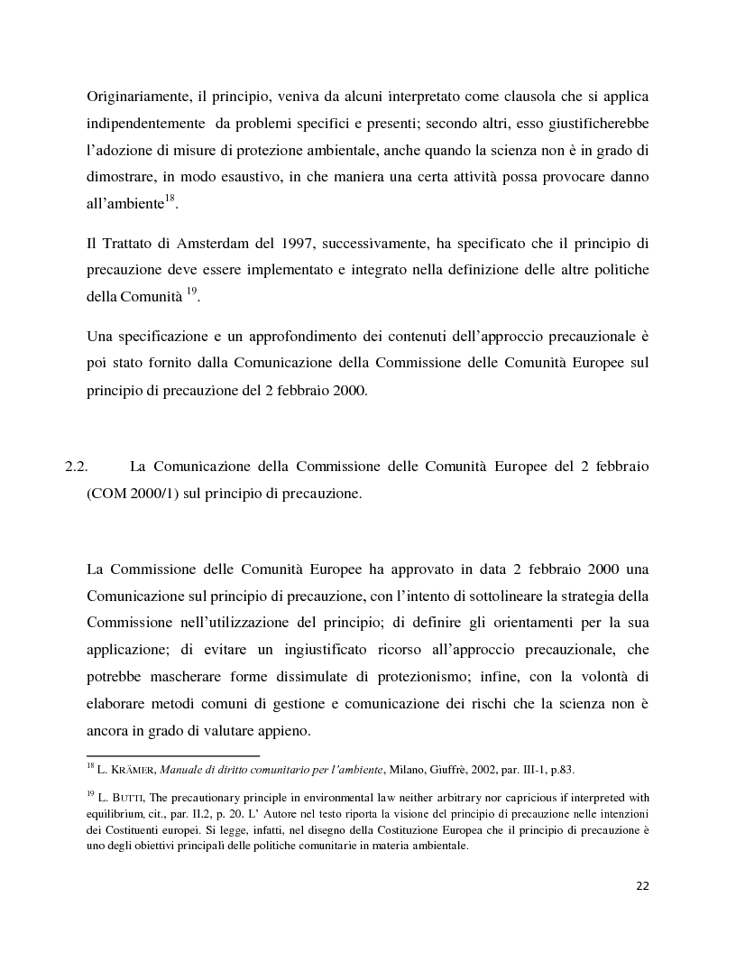 Anteprima della tesi: La decisione precauzionale tra normazione, amministrazione e giurisdizione, Pagina 11
