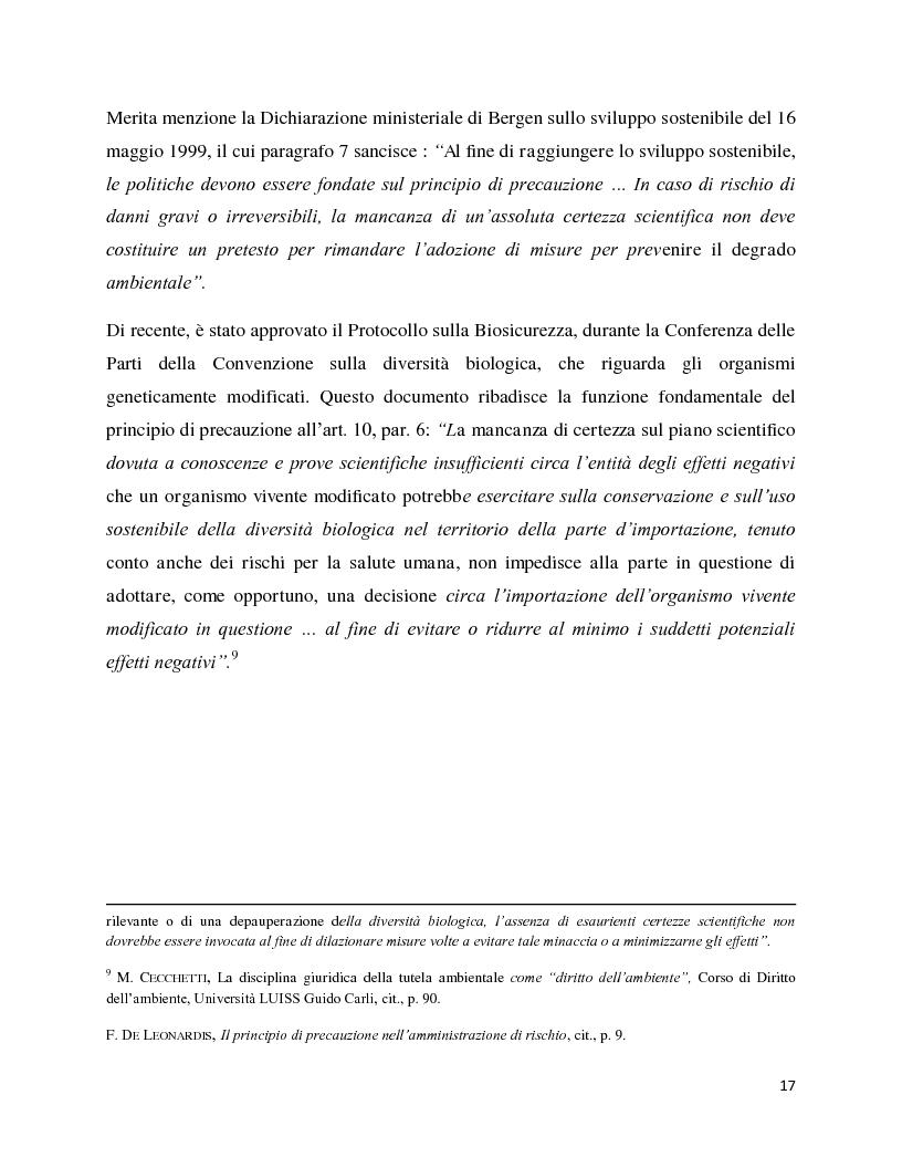 Anteprima della tesi: La decisione precauzionale tra normazione, amministrazione e giurisdizione, Pagina 6