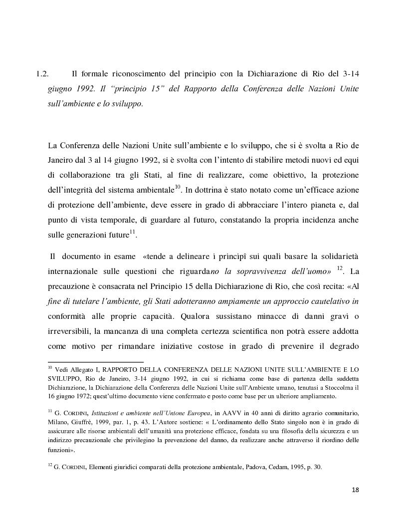 Anteprima della tesi: La decisione precauzionale tra normazione, amministrazione e giurisdizione, Pagina 7