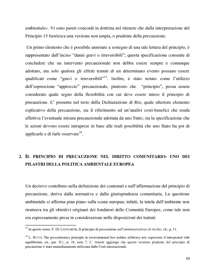 Anteprima della tesi: La decisione precauzionale tra normazione, amministrazione e giurisdizione, Pagina 8