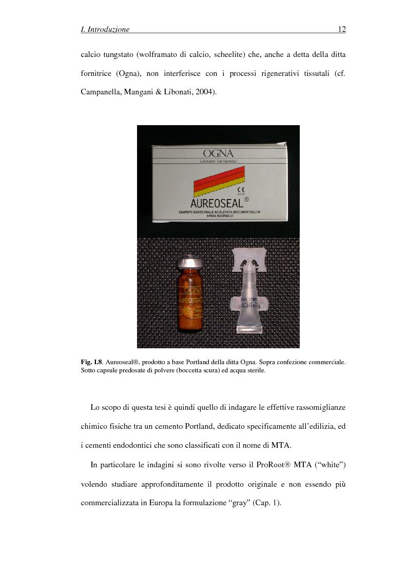 Anteprima della tesi: Il Mineral Trioxide Aggregate: analisi chimico-fisica, batteriologica e applicazioni cliniche, Pagina 10