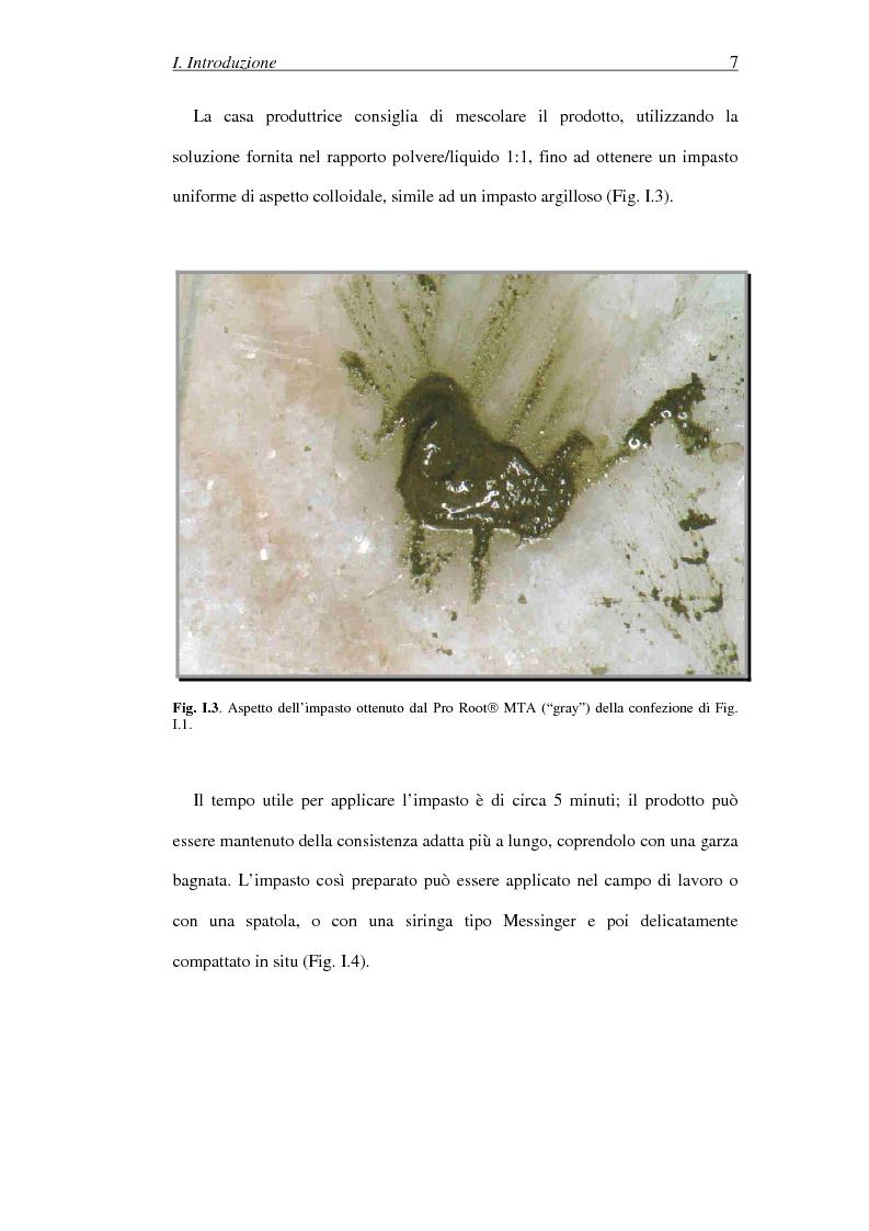 Anteprima della tesi: Il Mineral Trioxide Aggregate: analisi chimico-fisica, batteriologica e applicazioni cliniche, Pagina 5