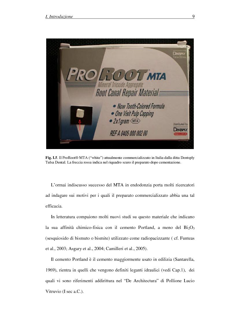 Anteprima della tesi: Il Mineral Trioxide Aggregate: analisi chimico-fisica, batteriologica e applicazioni cliniche, Pagina 7