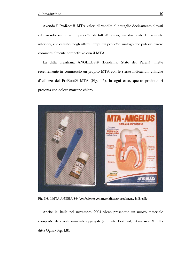 Anteprima della tesi: Il Mineral Trioxide Aggregate: analisi chimico-fisica, batteriologica e applicazioni cliniche, Pagina 8