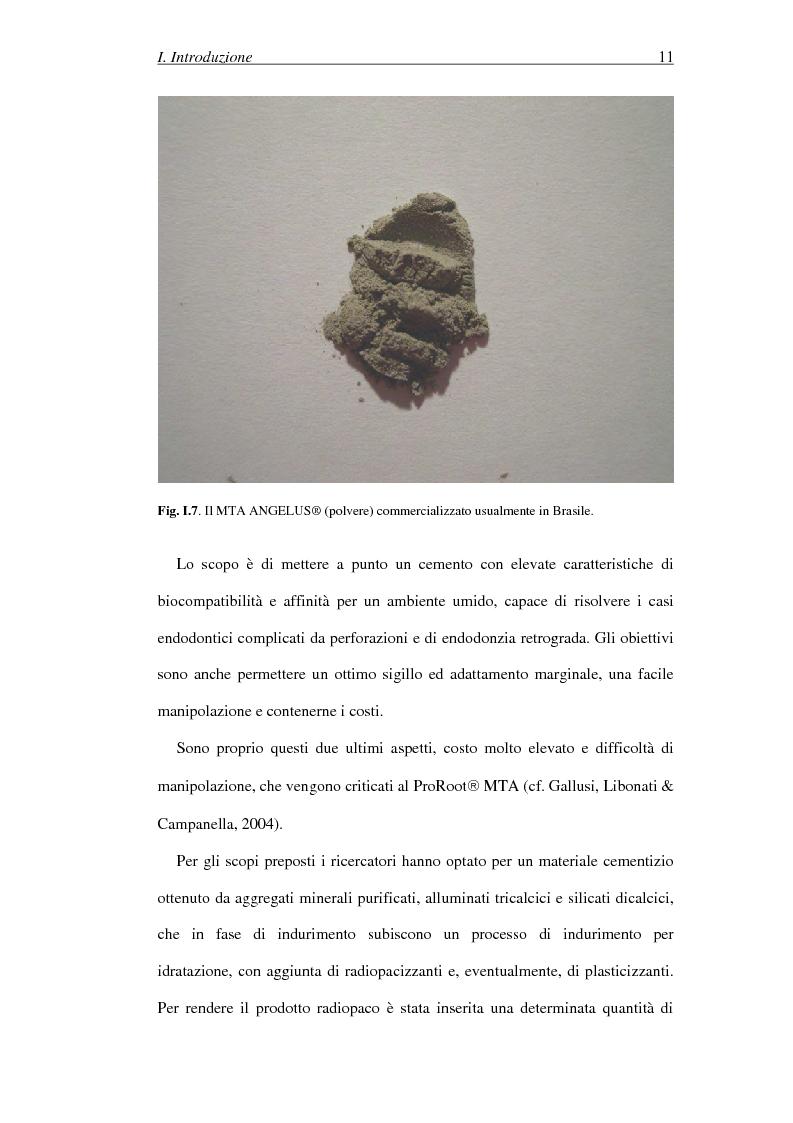 Anteprima della tesi: Il Mineral Trioxide Aggregate: analisi chimico-fisica, batteriologica e applicazioni cliniche, Pagina 9