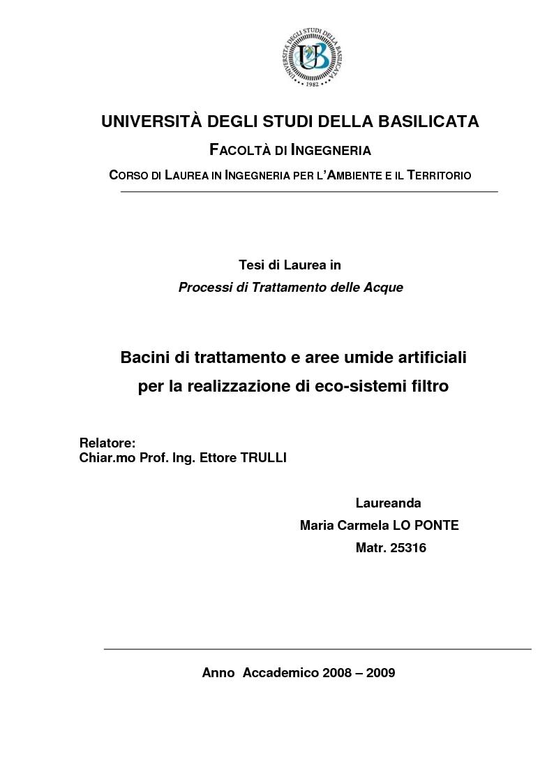 Anteprima della tesi: Bacini di trattamento e aree umide artificiali per la realizzazione di eco-sistemi filtro, Pagina 1