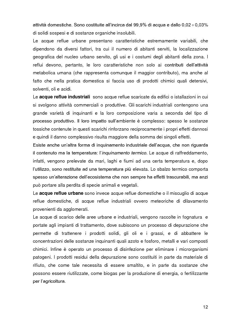 Anteprima della tesi: Bacini di trattamento e aree umide artificiali per la realizzazione di eco-sistemi filtro, Pagina 10