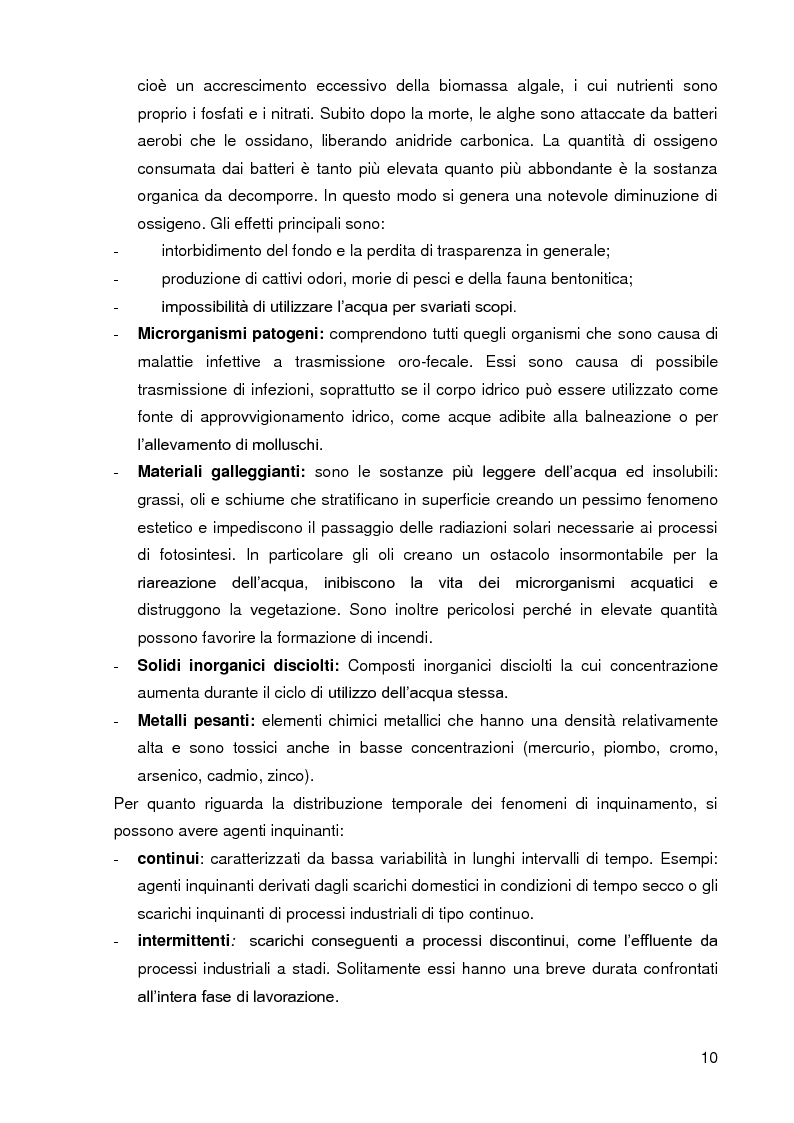 Anteprima della tesi: Bacini di trattamento e aree umide artificiali per la realizzazione di eco-sistemi filtro, Pagina 8